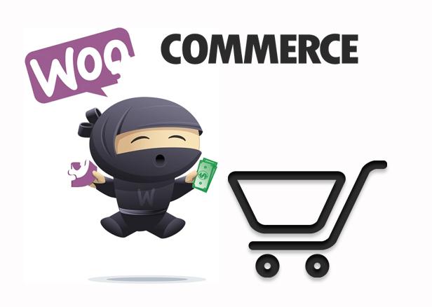woocommerce wordpress plugin toko online mudah dan cepat